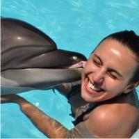 Джамала, дельфины
