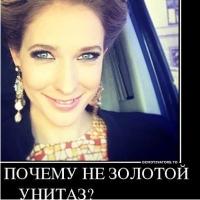 Катя Осадчая, Янукович, золотой унитаз